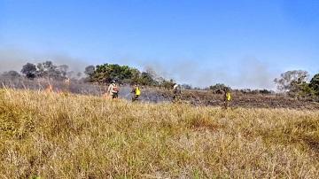 Mato Grosso lidera o ranking de focos de calor na Amazônia Legal - confira dados